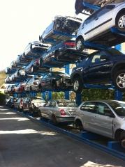 Vehiculos en Campa a la espera de pasar al tunel de despiece