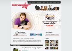 Diseño y Desarrollo del website de Borja Capponi, presentador del programa Malas Pulgas de La Sexta