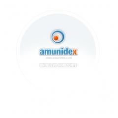 Amunidex s.l. - foto 4