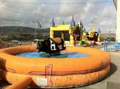 Parque infantil, toro mecanico, tobogan y castillo hinchable
