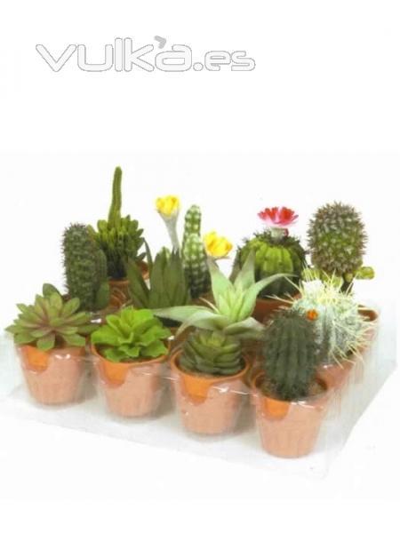 foto macetitas cactus artificiales cactus