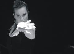 La guia de flamenco - foto 20