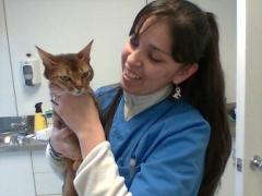 La responsable de servei veterinari gara, gabriela galván r.