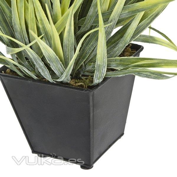 Foto plantas artificiales planta mata cintas - Plantas artificiales para exterior ...