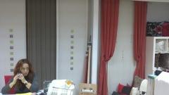 Panel japones,cortinas,estores presupuesto sin compromiso