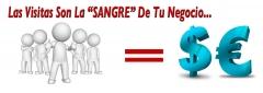 - las visitas son la sangre de tu negocio en internet - www.posicionateya.com -
