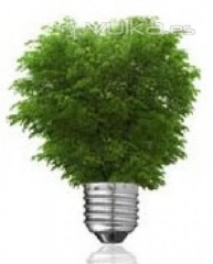 Energ�a verde