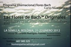 Curso flores bach originales enero 2012