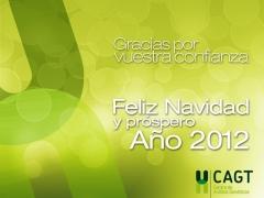 A TODOS NUESTROS CLIENTES Y AMIGOS LES DESEAMOS FELIZ NAVIDAD Y PR�SPERO A�O NUEVO 2012