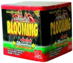 Bater�a blooming. cola roja, verde y plata con apertura en crisantemos rojo, verde y blanco etc...