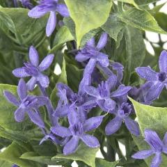 Plantas artificiales con flores. planta amsonia artificial flores lilas en lallimona.com (2)
