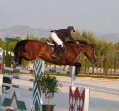 Escuela de equitación en murcia, escuela de hipica murcia, yeguada murcia, campeon de españa de salt