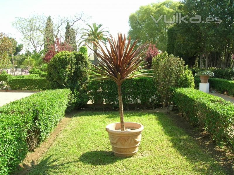 Foto mantenimiento de jardines for Mantenimiento de jardines
