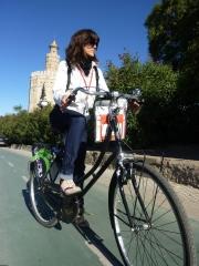 Alquiler, Venta y Reparaci�n de Bicicletas, Rutas por Sevilla: Con Gu�as o Audio-Tours......