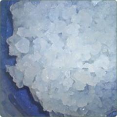 Hongo kéfir de agua. disponible en nuestra tienda virtual