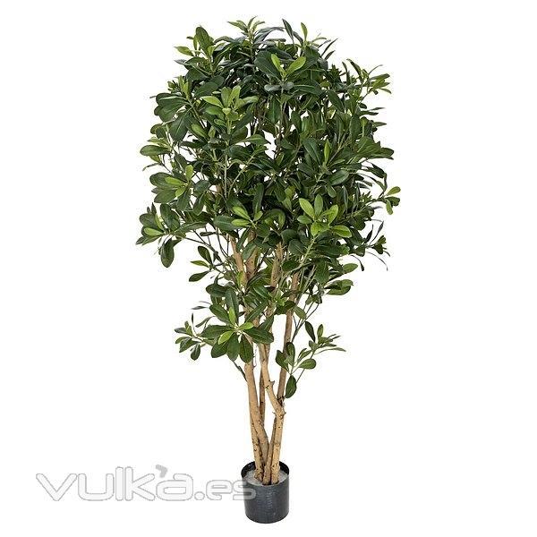 Foto plantas artificiales planta pittosporum artificial con maceta 120 en la llimona home - Plantas artificiales exterior ...