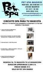 NUEVO CIRCUITO SPA PARA MASCOTAS EN PET SPA MADRID
