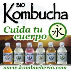 Refresco alternativo: kombucha