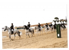 Exhibicion de los alumnos de la escuela de equitacion al-andalus