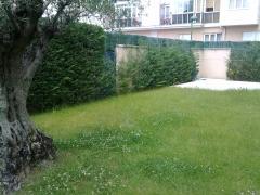 Reforma jardin 1