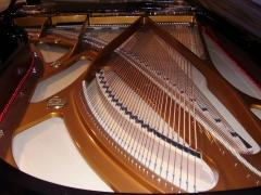 Piano nuevo Seiler 4/4  74.000 euros ahora: OFERTA  43.000 EUROS IVA INCLUIDO, UN REGALO