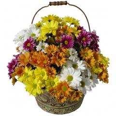 Cesta de flores. margaritas para enviar a domicilio.