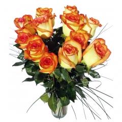 Regala rosas a domicilio. rosas bicolor para enviar flores online.