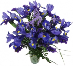 Ramo de estatices e iris.  enviar y regalar flores a domicilio con la mejor floristería online.