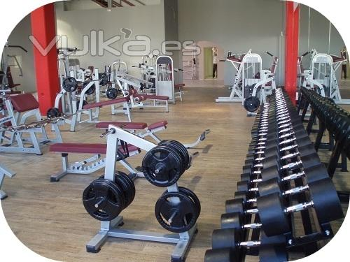 Maquinas de gimnasio maquinas para gimnasio - Equipamiento de gimnasios ...