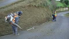 Desbrozado y limpieza de caminos
