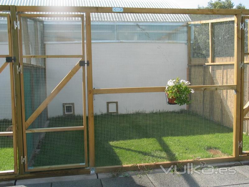 Foto jardin para gatos for Como ahuyentar gatos del jardin