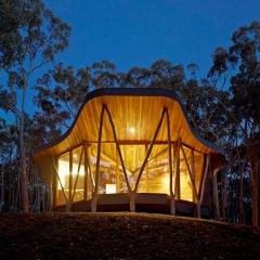 Casa tronco. un dise�o con aires de arquitectura org�nica by paul morgan architects