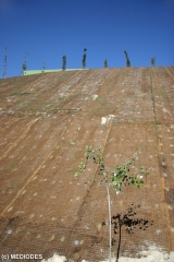 Protección de taludes frente a la erosión en campo de gol doña julia (málaga)