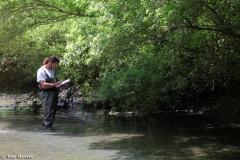 Inventariando la vegetaci�n de ecosistemas fluviales.