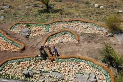 Obras de recreacion de h�bitats para la especie de caracol Iberus gualtieranus en Ja�n