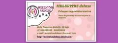Peluqueria canina melenitasdeluxe (valencia) - foto 13