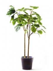 Planta artificial. oasisdecor.com plantas artificiales de calidad