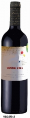 CHILE RED WINE TYPE OF WINE: Red wine from Colchagua Valley (Chile) CEPAGE: Cabernet Sauvignon 100%