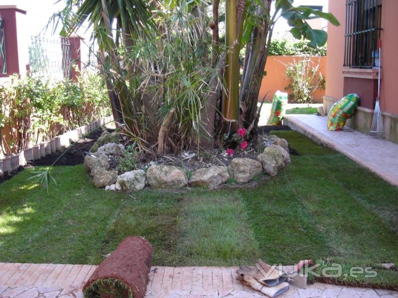 Foto jardin mediterraneo con cesped en tepes for Diseno jardin mediterraneo
