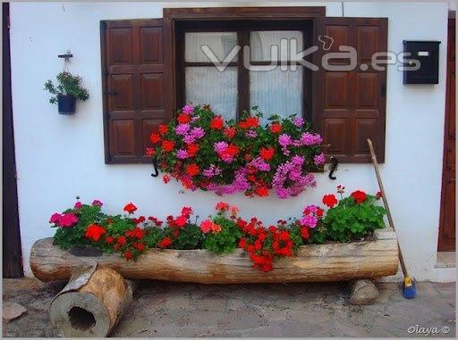Foto jardinera hecha en un tronco - Jardineras con ruedas ...