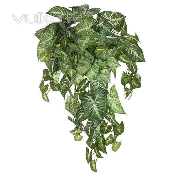Foto plantas colgantes artificiales planta artificial colgante syngonium verde en la llimona home - Plantas colgantes ...