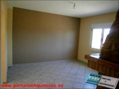 Pintura plastica mate techo blanco paredes marron y color vb119