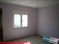 Pintura plastico mate techo blanco y paredes color va041