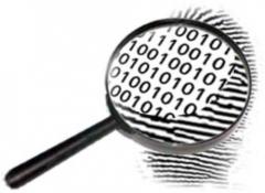 Búsqueda de evidencias informáticas en valencia