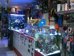 Foto interior con acuarios