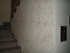 Pintores francisco - foto 3