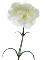 Claveles artificiales economicos. clavel artificial blanco gama economica oasis decor
