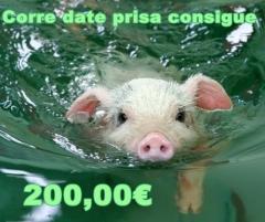Participa!! solo puedes ganar!! https://www.facebook.com/lupassoficinas.materialdeoficina