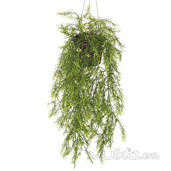 Foto plantas colgantes artificiales planta artificial colgante springeri en la llimona home - Plantas artificiales exterior ...