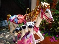Infantiles. Kiddie Rides. Modelos variados.